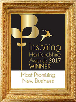 most-promising-new-business copy