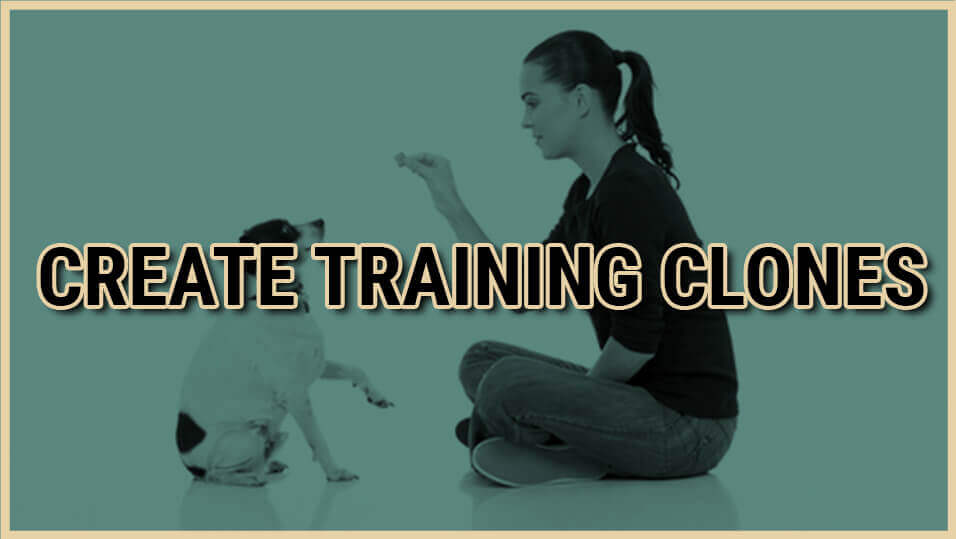 CREATE TRAINING CLONES