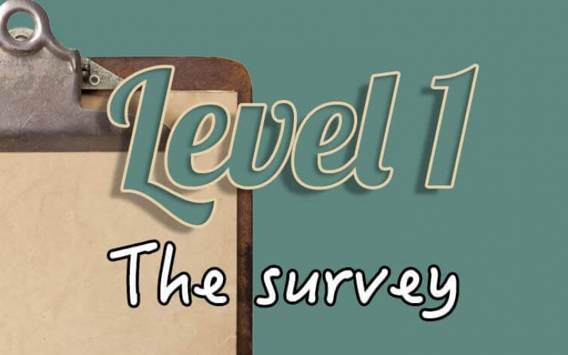 Level 1 – the survey