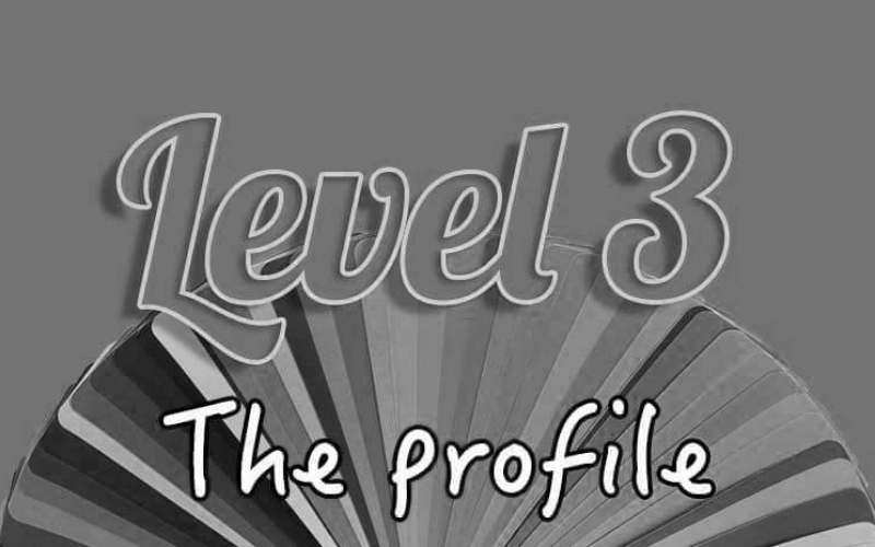 Level 3 the profile blacked out