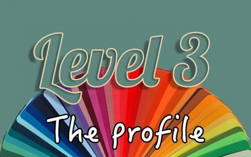 Level 3 the profile