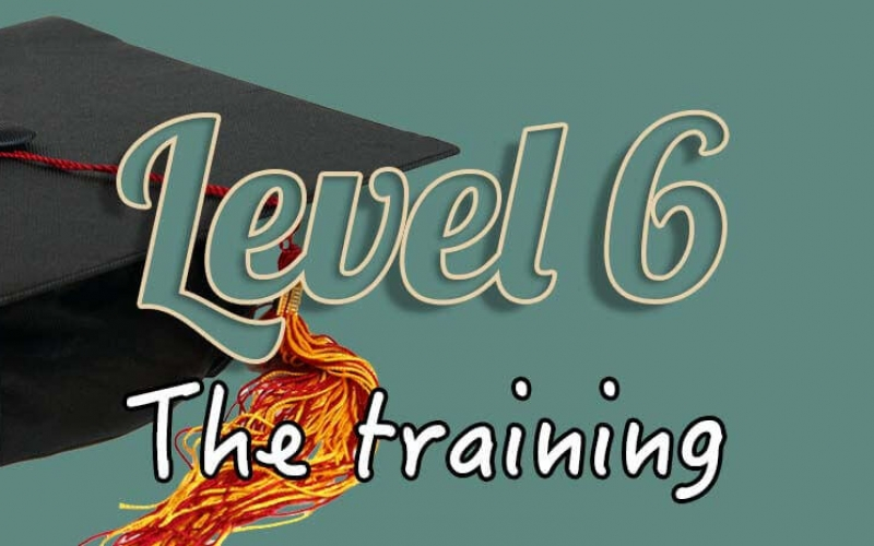 Level 6 training